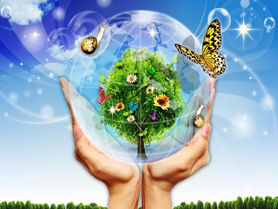 ekologiya-sos3