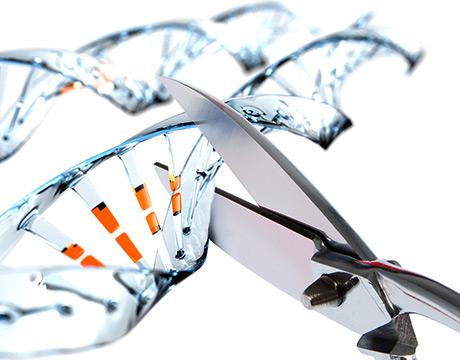 8-Ways-CRISPR-Cas9-Can-Change-the-World_hero