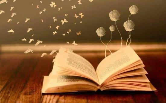 книги-романы