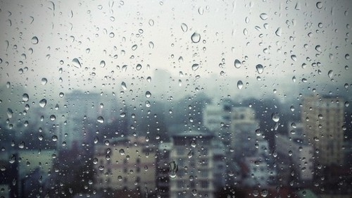 погода ветер дождь.jpg