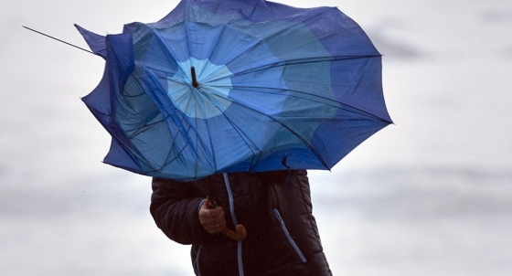 погода ветер-дождь
