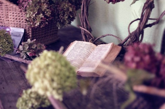 чтение-весна.jpg