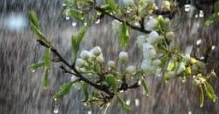 дождь - ветер-весна