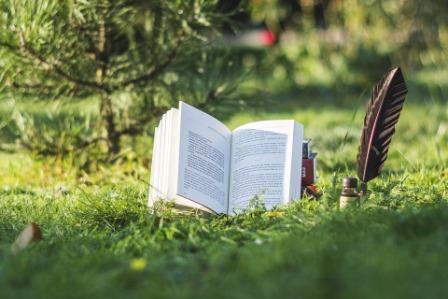 лето-книга-природа.jpg