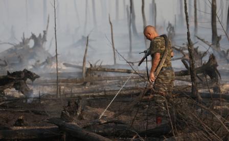 россия пожары
