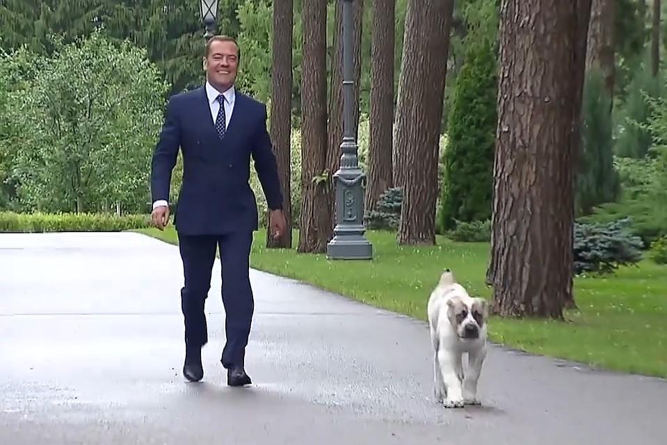 айк и медведев