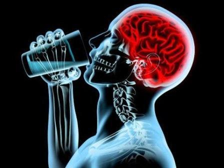 алкоголь-мозг.jpg