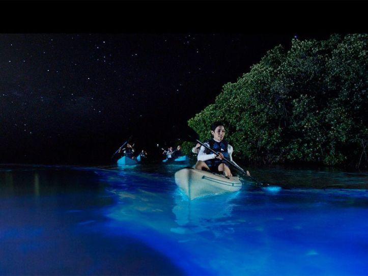голубая лагуна - флорида