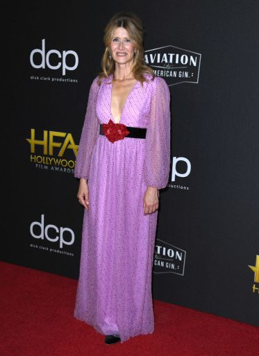 BEVERLY HILLS, CALIFORNIA - NOVEMBER 03: Laura Dern arrives at the 23rd Annual Hollywood Film Awards at The Beverly Hilton Hotel on November 03, 2019 in Beverly Hills, California. (Photo by Steve Granitz/WireImage)