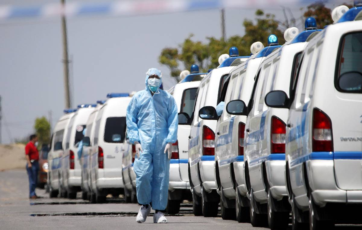 China Mexico Swine Flu