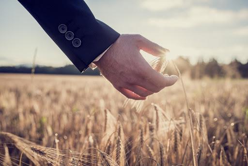 сельхоз страхование