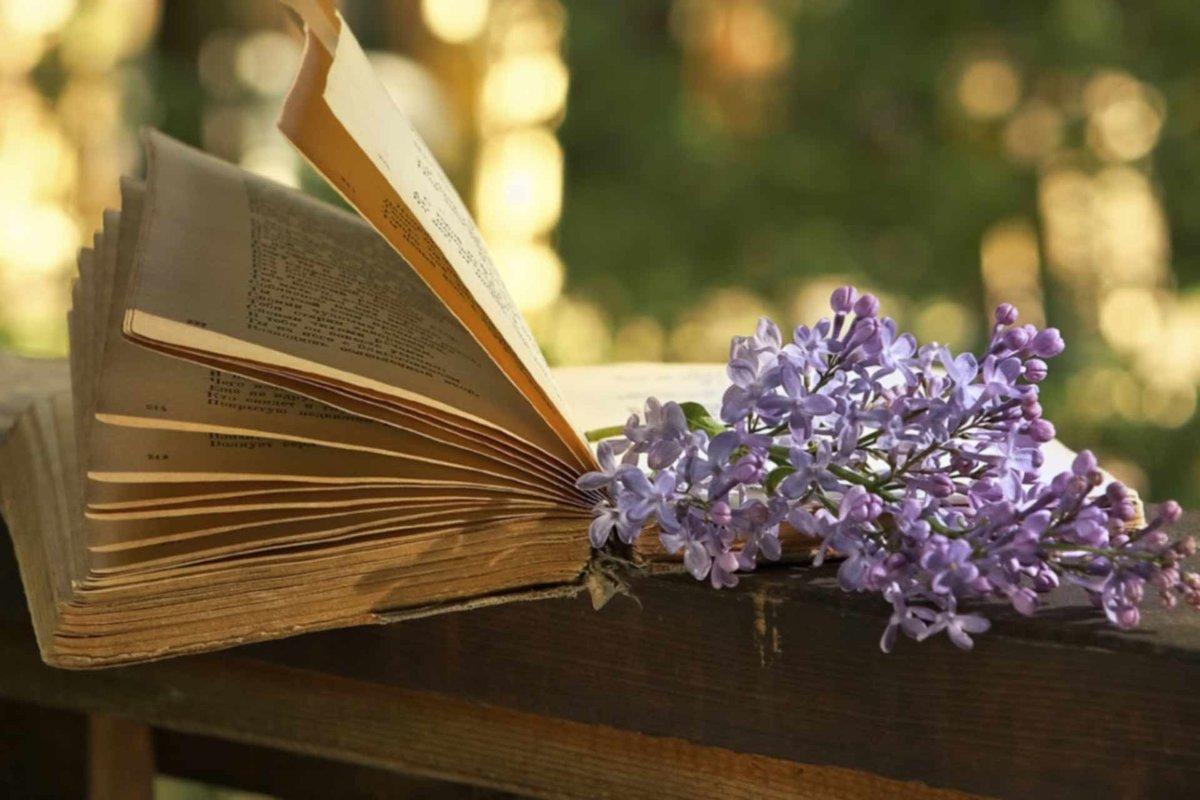 книги-чтение-весна