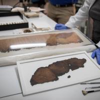 Найдены древние манускрипты таинственного происхождения