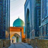 Установлен новый порядок въезда в Узбекистан