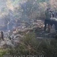 Xaçmazda rayonunda yanğınlar söndürülüb - VİDEO