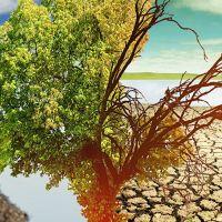 Какие катастрофы ожидают Землю на фоне изменения климата?